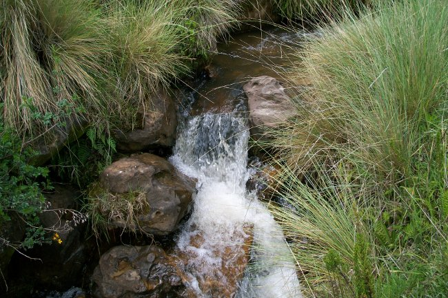 Fuentes de abastecimiento: Sistema de agua potable