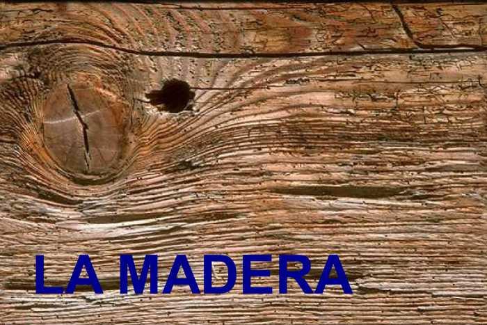 SEXTA FICHA DE AUSCULTACIÓN ESTRUCTURAL – Los defectos en la MADERA
