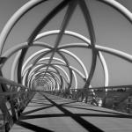 ¿Un florista puede diseñar puentes? (I)