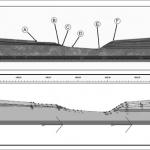 Diapositiva – La Vía Elementos de la Sección Transversal
