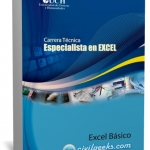 Manual de Excel básico [Especialista en Excel 1/3]