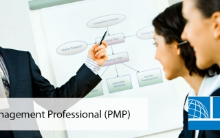 Project Management Professional SIN HD