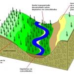 Meteorización, Erosión y Formación del Suelo
