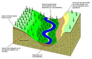 formacion suelo