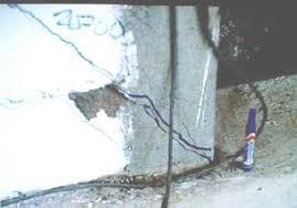 imagen6