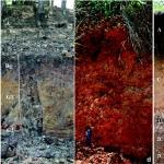 Tipos de Suelos [Mecanica de suelos]