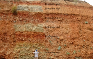 Edafogénesis suelos