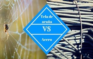 arana 01