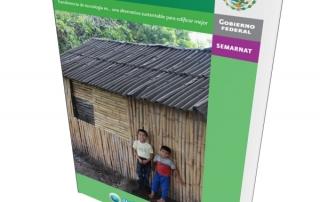 construccion-sustentable-con-bambu