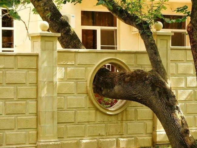 Construcciones ingeniosas alrededor de árboles existentes