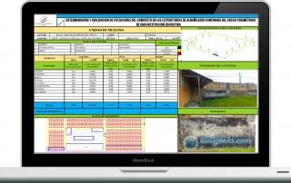 Determinación y evaluación de Patologías del concreto en las estructuras de albañilería